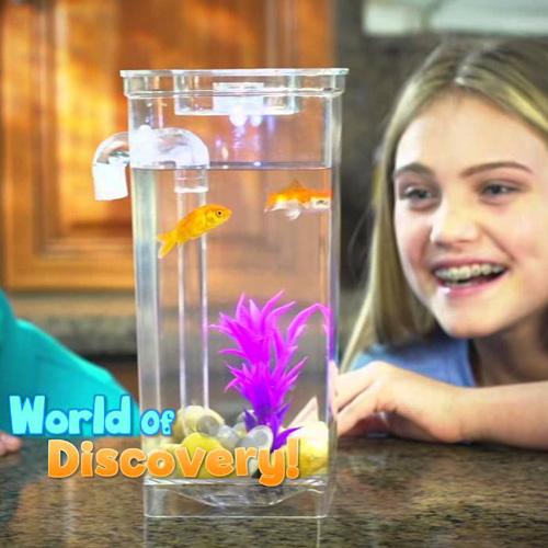 خرید پستی آکواریوم جادویی Fun Fish